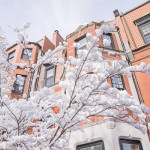 boston-hiver-neige-12-1050x700