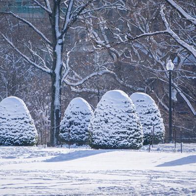 boston-hiver-neige-17-1050x700
