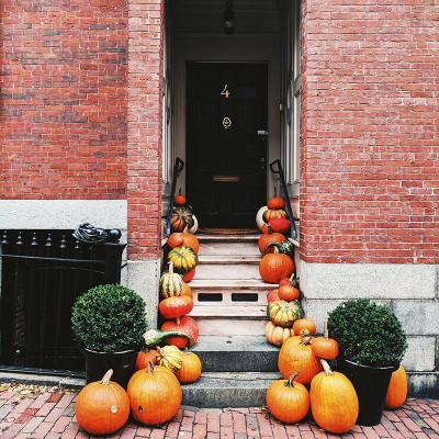 Multi citrouilles deco Halloween Boston